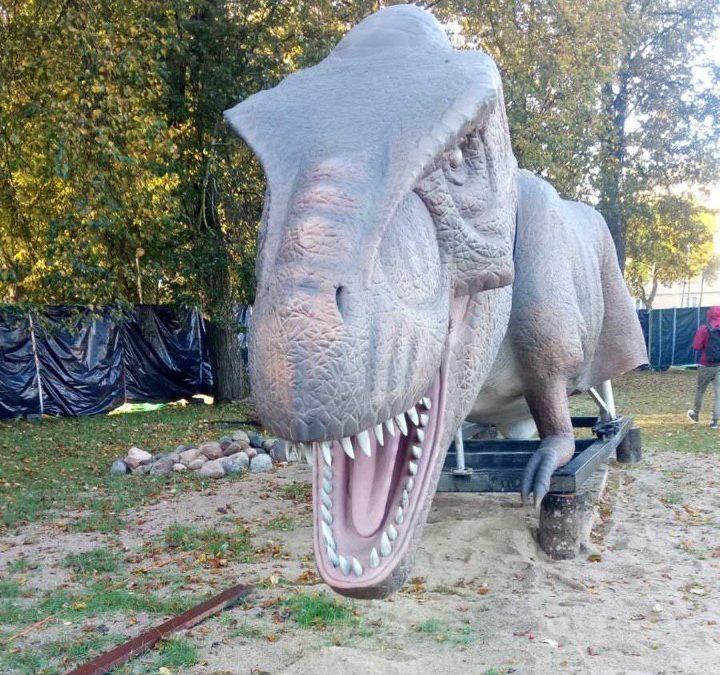 Типи вантажів для автомобільних перевезень. Перевеземо ВСЕ і навіть ... динозавра!